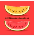 Slice of nice fresh yellow and red watermelon vector image vector image