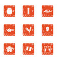tea period icons set grunge style vector image vector image