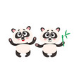 two cute happy baby panda characters with paws vector image vector image
