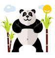 panda and bamboo flat style colorful vector image