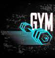 banner for the gym vector image
