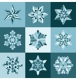 Blue White SnowFlake Shape Elements vector image