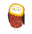 cute owl with tick plumage and tiny beak vector image vector image