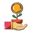 flower plant with leaves in the hand vector image vector image