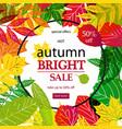 hello autumn sale vector image vector image