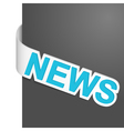 left side sign news vector image