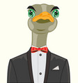 ostrich in suit vector image vector image