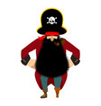 pirate isolated eye patch and smoking pipe vector image vector image