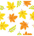 seamless pattern with fall maple leaves vector image