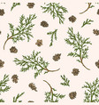 seamless pattern with juniper branches vector image vector image