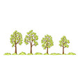 some trees and bushes vector image
