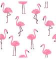 cute flamingo background vector image