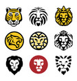 best lion head logo set vector image vector image