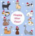 cats in new year caps vector image