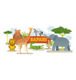 group of african safari animals vector image