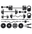 gym heavy weight equipment fitness dumbbell and vector image
