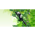 panda sitting on a tree in the jungle vector image vector image