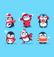 penguins christmas penguin characters in winter vector image