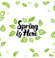 Spring is here greeting postcard vector image