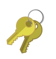 Two Keys vector image