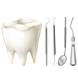Dental set with tooth and equipment vector image