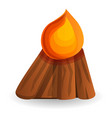 boy scout campfire icon cartoon style vector image