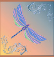 bright fantasy dragonfly on background vector image vector image