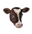 color sketch of cows face vector image