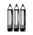 contour pencils school tool object design vector image vector image