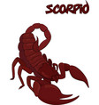 red scorpion symbol isolated on white vector image vector image
