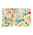 set of decorative elements with flowers and vector image vector image