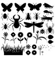 set of insects and flowers vector image
