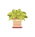 Succulent Plant In Pink Pot vector image vector image