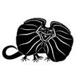 Angry black lizard