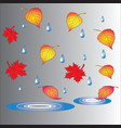 autumn theme fallen leaves and puddles vector image