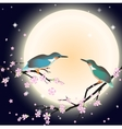 Background with cherry blossom and a couple bird vector image