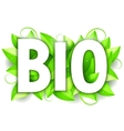 Bio Word and Leaves vector image