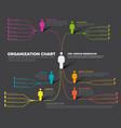 company organization hierarchy schema template vector image vector image