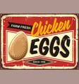 farm fresh chicken eggs vintage promotional sign vector image vector image