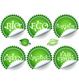 Green stickers-set2 vector image