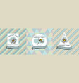 three colored labels with chamomile vector image vector image