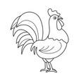 coloring page outline cartoon cock vector image vector image