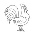 coloring page outline of cartoon cock vector image