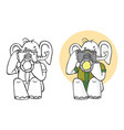elephant photographer and camera vector image vector image
