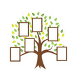 family tree template design vector image