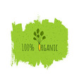 organic eco fresh vegan green design template vector image vector image