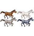 Wild horses vector image vector image