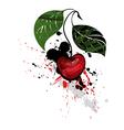 Cherry Berry vector image