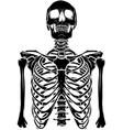 black silhouette human skeleton on white vector image vector image