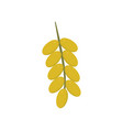 branch of date palm fruit icon in flat design vector image